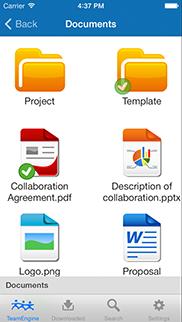 TeamEngine för iPhone app - Skärm 2 (utvecklad av Appego)